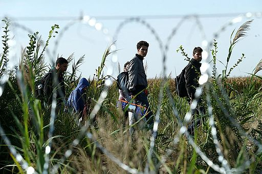 Migrants in Hungary 2015 Aug 015
