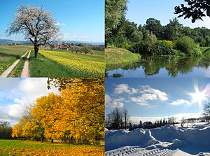 English: Four seasons collage from four Wikime...