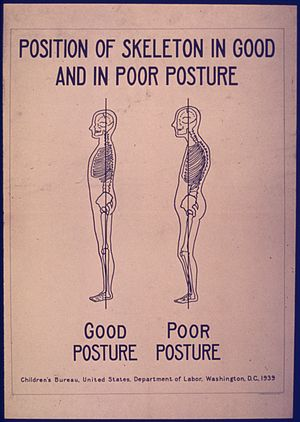 POSITION OF SKELETON IN GOOD AND POOR POSTURE ...