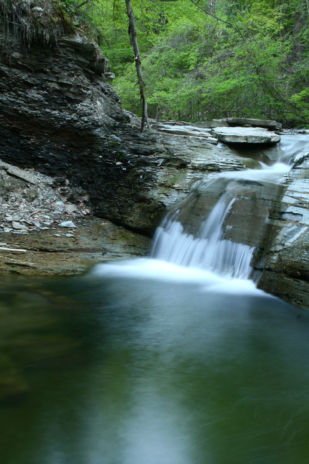 Fourmile Creek Pennsylvania Wikipedia