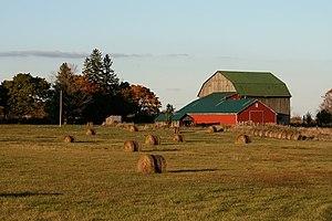A Generational Farm Session