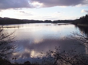 Scottish Wildlife Trusts Balgavies Loch.