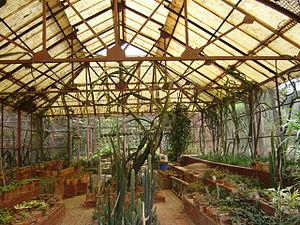 Botanical Garden Dhaka Bangladesh 4