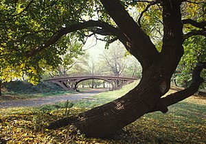 Central Park Bridges (view from Bridlepath loo...