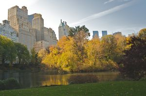 Apartments facing Central Park in midtown Manh...