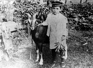English: Billy Sheppard and his goat, Brownie
