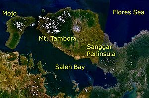 Mt. Tambora and its surroundings as seen from ...