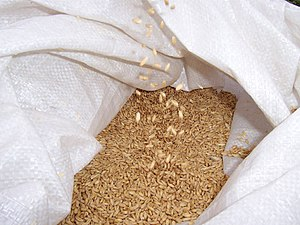 A bag of wheat, often used as an adjunct