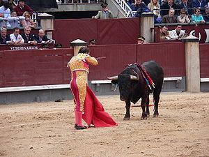 A matador in full dress in Plaza de Toros Las ...