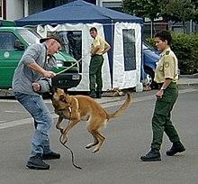 Beamte der BPOLI Angermünde bei einer Diensthundevorführung in Frankfurt Oder (Bild: Sicherlich/Wikipedia)