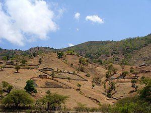 Hills of Dili