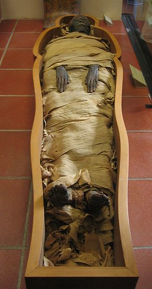 An Egyptian mummy kept in the Vatican Museums.