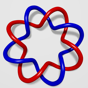The two curves of this (2,4)-torus link have l...