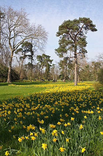 Spring day in the park of Bagatelle, Paris, Fr...