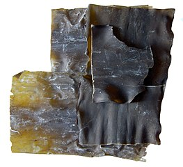 https://i2.wp.com/upload.wikimedia.org/wikipedia/commons/thumb/1/10/Kombu.jpg/263px-Kombu.jpg