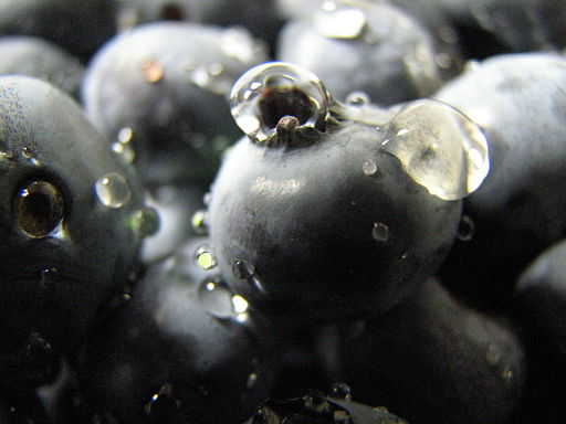 Blueberries (176323692)