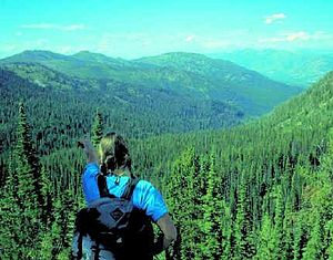 English: Hiker in Bob Marshall Wilderness Area...