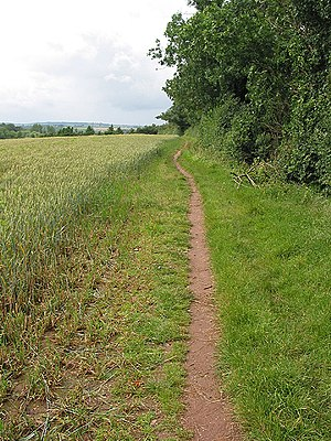 English: Footpath near Archenfield