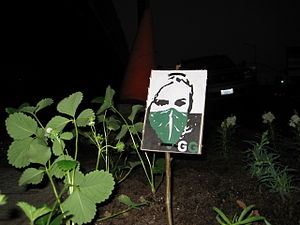 This is how you know this is a Guerilla Garden...