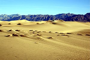 Sand dunes in death valley national park edit 2