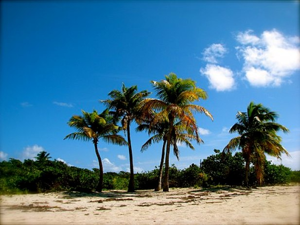 Isle of Icacos V