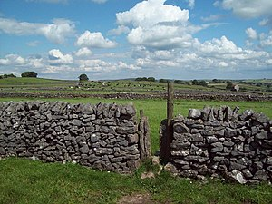 English: Squeezer Stile and Dry Stone Walls Th...