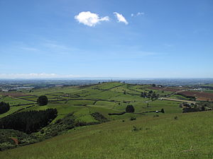 English: View from Mount Puketutu (part of the...