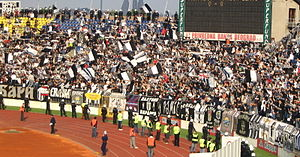 English: Grobari, fans of FK Partizan, are cel...