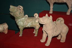 Pottery figurines of dogs from the Chinese Han...