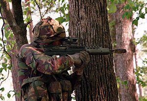 A Royal Marine stands beside a large tree to s...