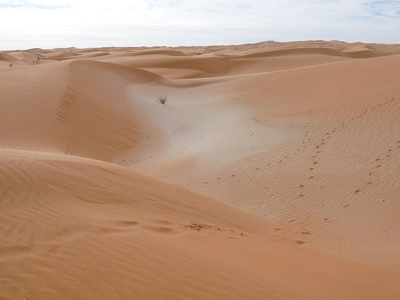 File:Adrar sands.JPG