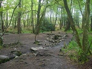 Français : La Fontaine de Barenton en forêt de...