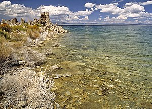 Lakeside of the Mono Lake with Tufa columns in...