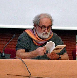 Padre Alex Zanotelli attending a meeting durin...