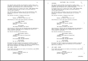 A spec screenplay vs a production screenplay.