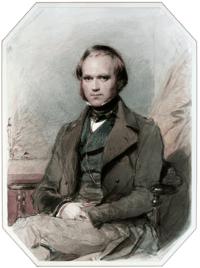 Three quarter length portrait of Darwin aged about 30, with straight brown hair receding from his high forehead and long side-whiskers, smiling quietly, in wide lapelled jacket, waistcoat and high collar with cravat.