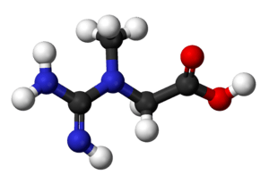 Ball and stick model of the creatine molecule.