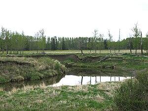 English: Blindman River, near Rimbey, Alberta