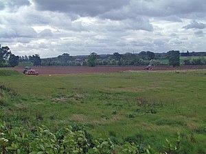 English: Farmer rolling his field Taken from t...