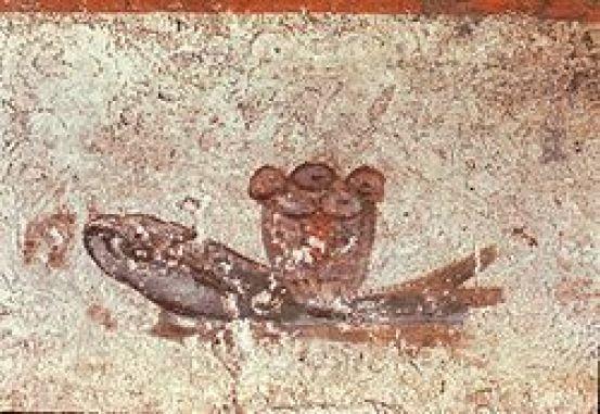 Resultado de imagen para pez de cementeriodeLucina