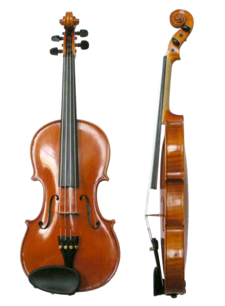 File:Violin VL100.png