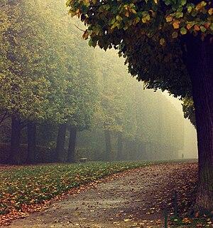 Français : Parc de Sceaux...promenade.