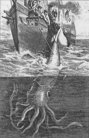 The Alecton attempts to capture a giant squid ...