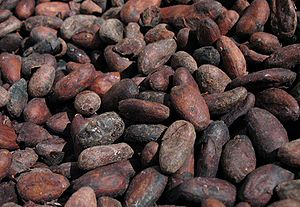English: Roasted cocoa (cacao) beans