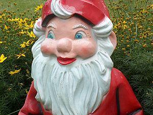 Gardengnome face