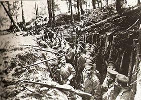 Trincheras rusas en el bosque de Sarikamis.