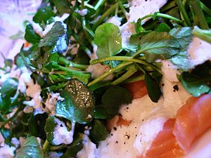 Smoked salmon, watercress, crème fraîche, hors...