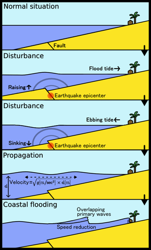 Most tsunamis are generated by underwater eart...