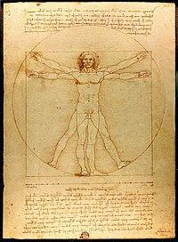 Homem Vitruviano, primeira obra de Da Vinci a aparecer na trama.