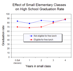 A class size experiment in the United States f...